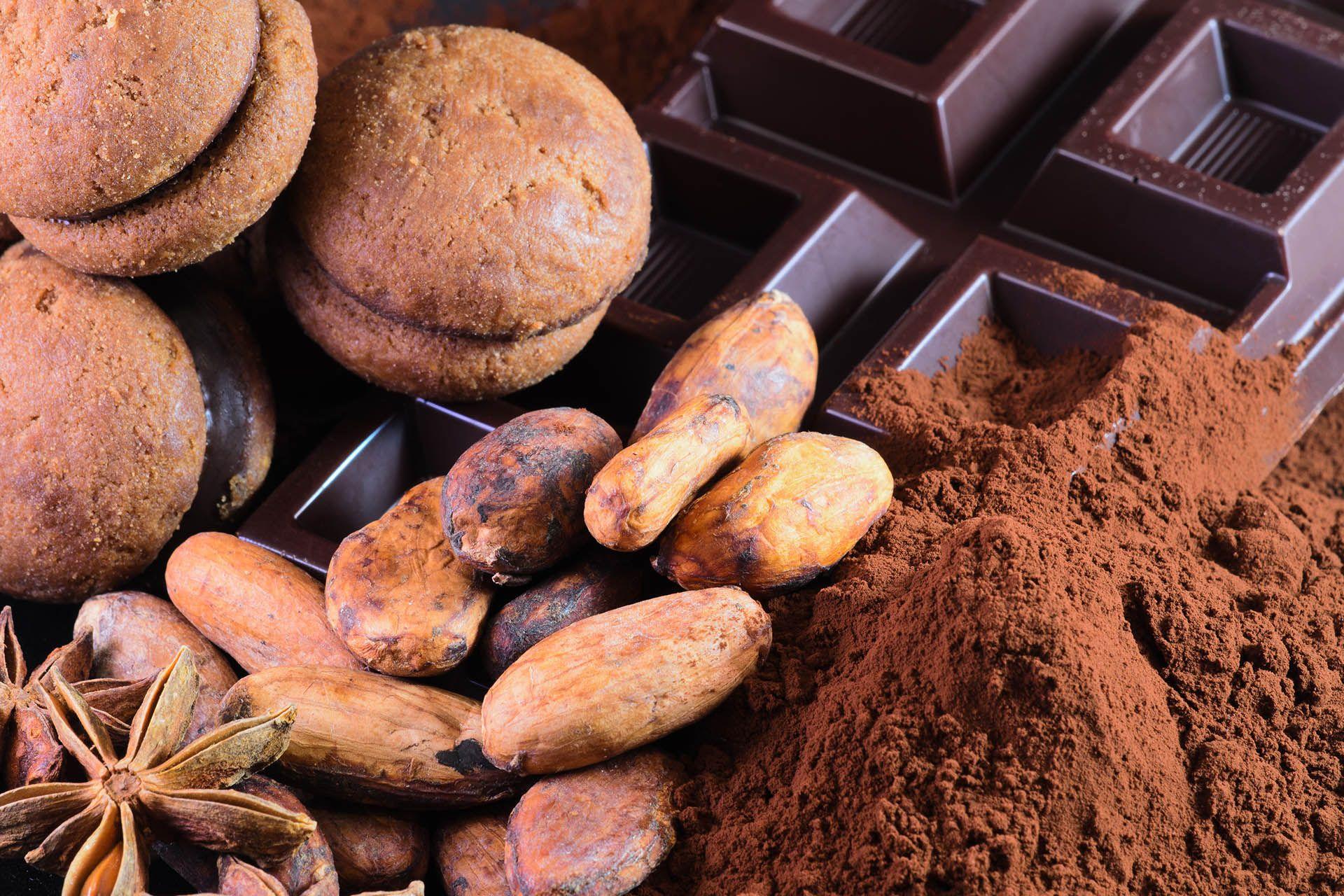 festival cacao e cioccolato